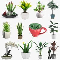 12 Pot Plant 3D models