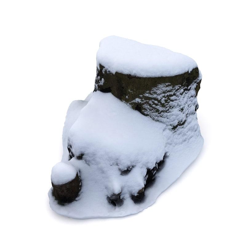 scan tree stump snow 3D model