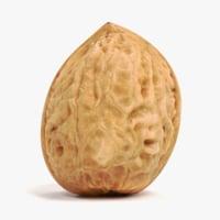 3D walnut shell