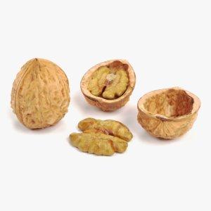 walnut pbr model
