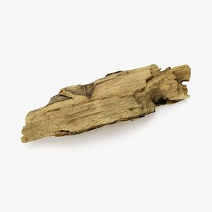 driftwood wood 3D model