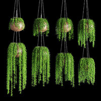 Hanging plants in pots on a chain. 8 models
