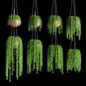 hanging plants pots chain 3D
