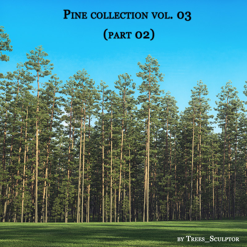 3D pine pine-trees tree model
