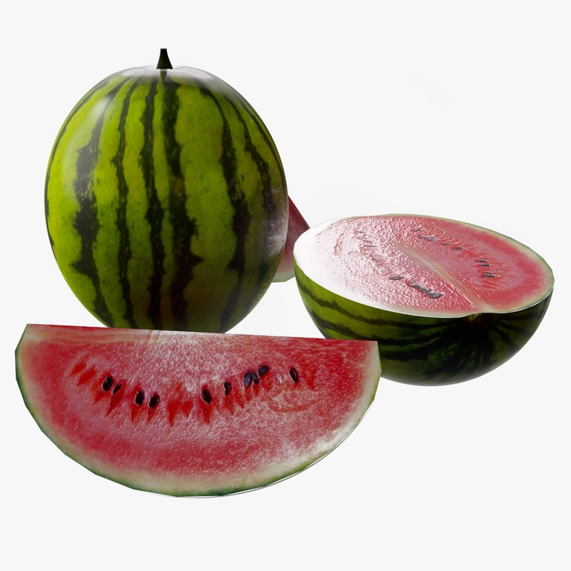 3D ready watermelon model