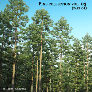 pine pine-trees tree 3D