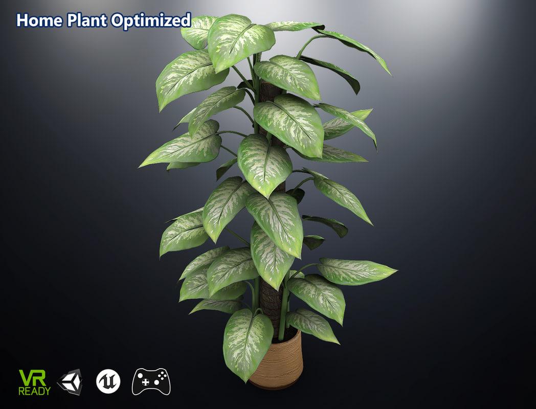 3D optimized home plant dieffenbachia model