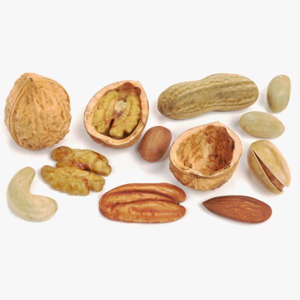 3D nuts walnut shell