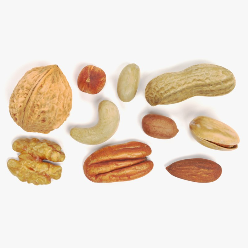 nuts hazelnut walnut 3D model