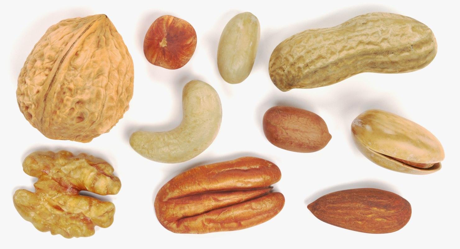 nuts hazelnut walnut 3D model