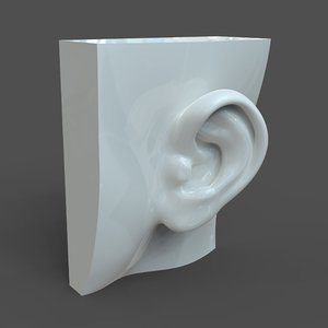 3D left ear casual