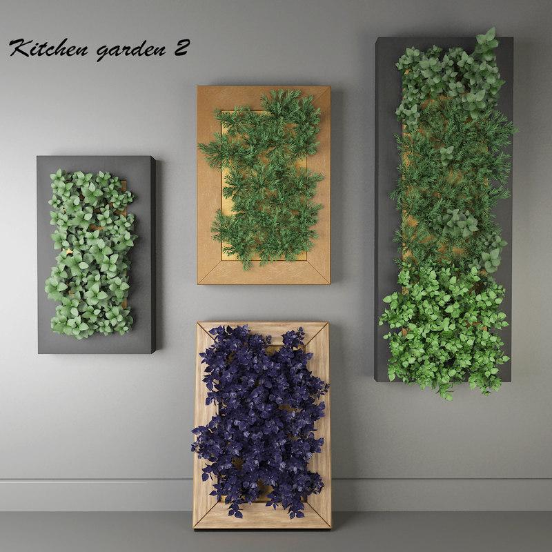 3D model decorative kitchen oregano plants