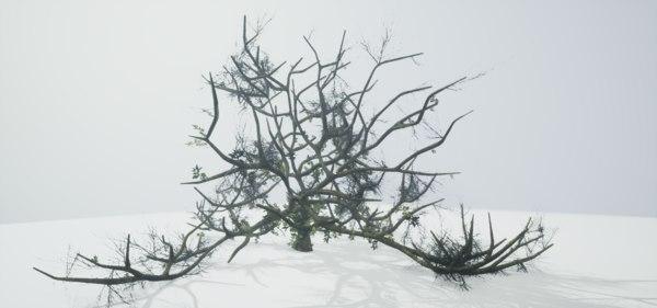 free leaves trunk 3d model