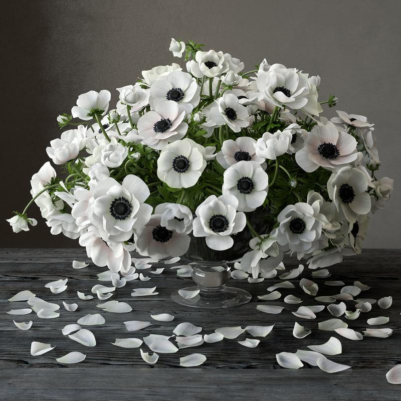 3D anemone model