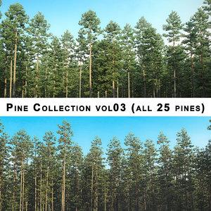 3D pine 25