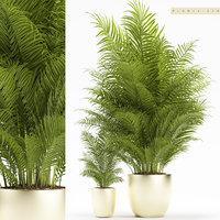 3D plants 156