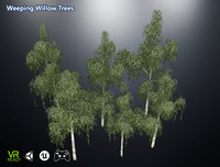3D optimized weeping willow trees model