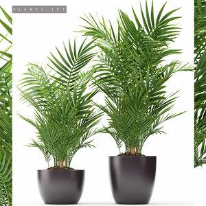 plants 157 3D model