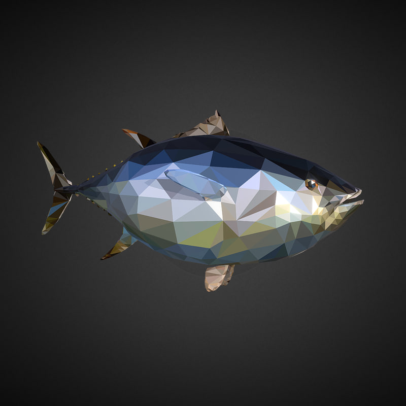 3D model tuna art ocean fish