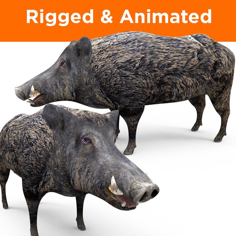 3D model wild boar rigged animation