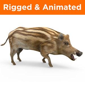 wild boar rigged animation model