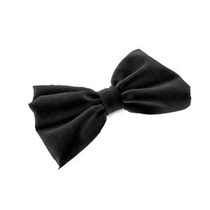 ribbon bow model
