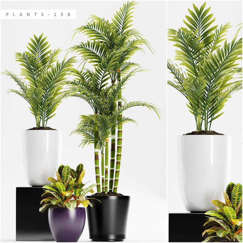 plants 158 3D