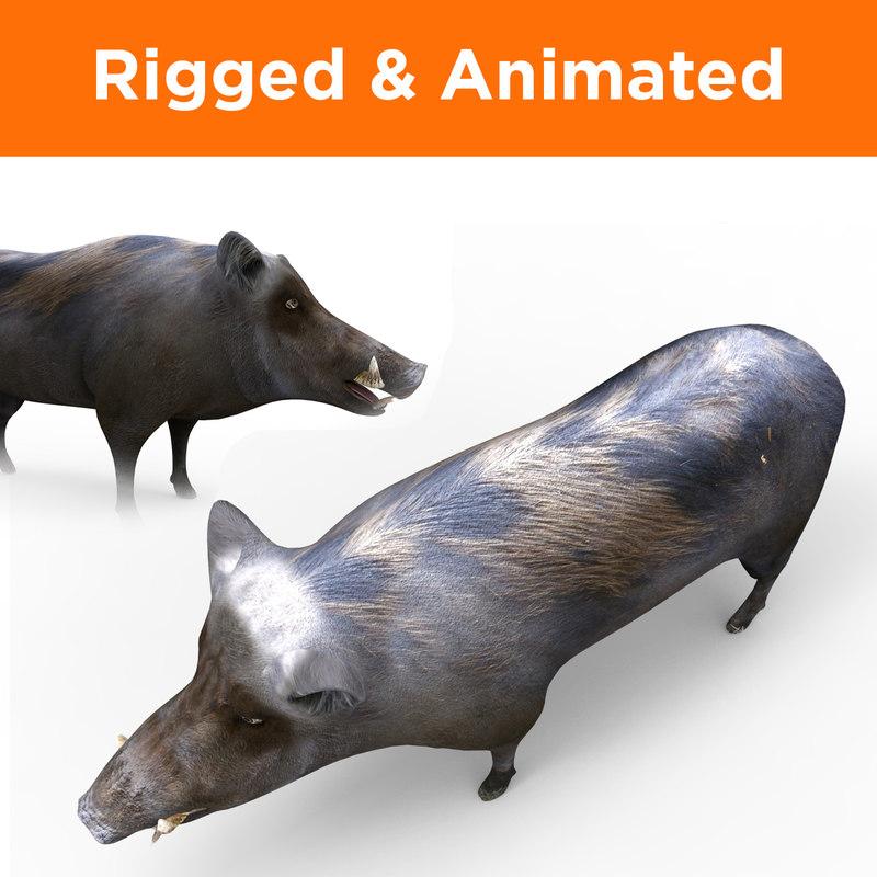 wild boar rigged animation 3D model