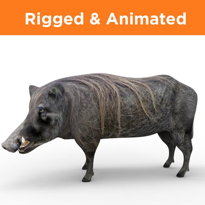 3D wild boar rigged animation model