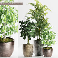 plants set 159