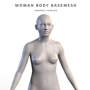 3D woman anatomy model