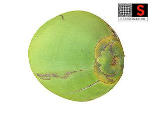 real coconut 8k 3D model