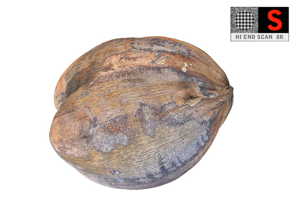 real coconut 8k 3D