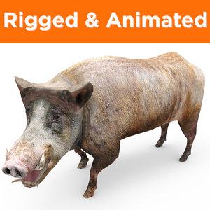 3D wild boar rigged ready