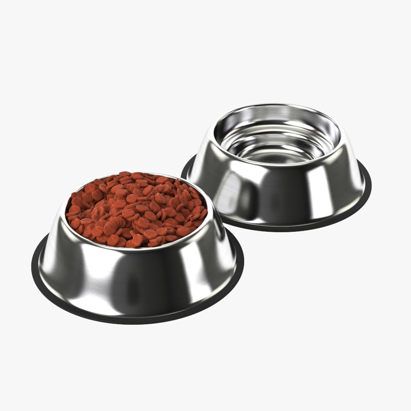3D stainless steel dog model