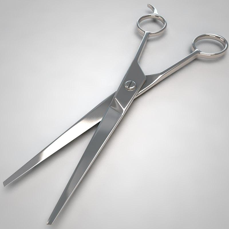 scissors model