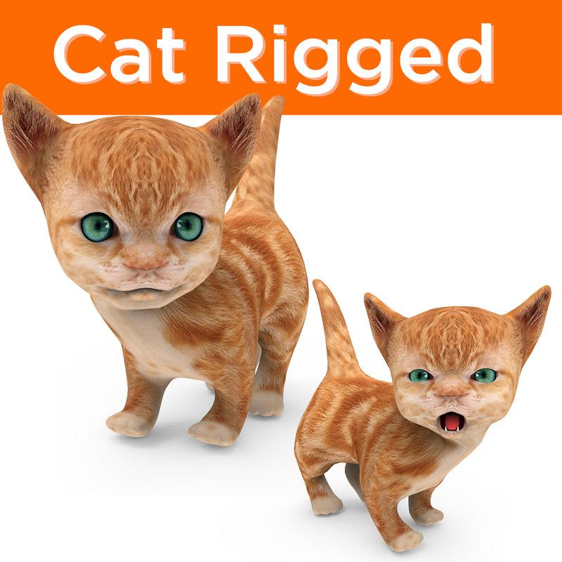 cute cartoon cat rigged 3D model