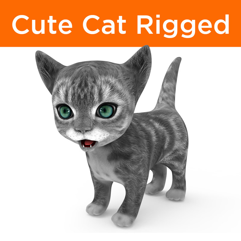 cute cartoon cat rigged 3D model