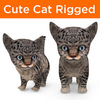 cute cartoon cat rigged 3D