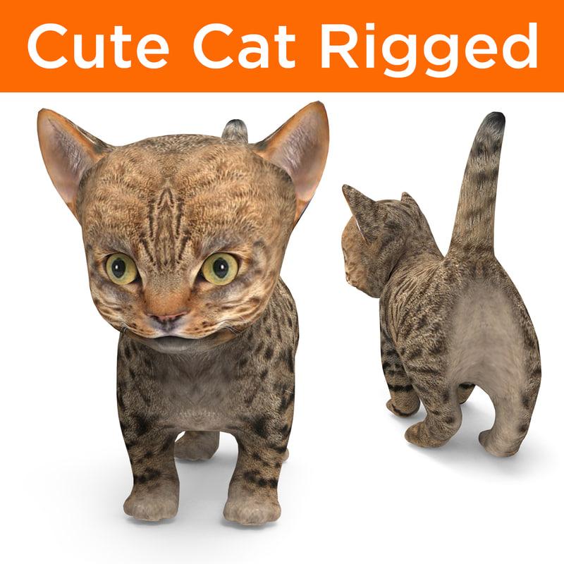 cute cartoon cat rigged model