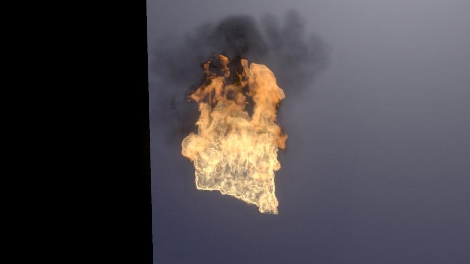 fire fuel 3D model