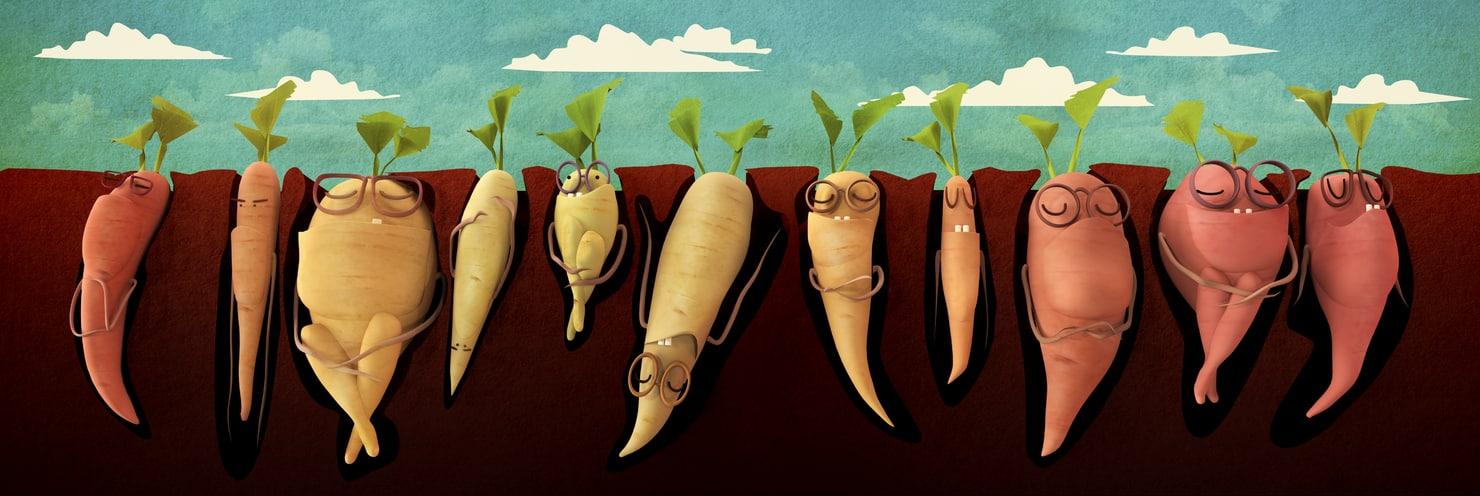 lovely carrots 3D model