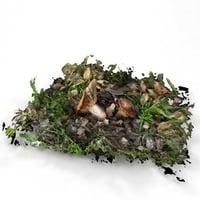 3D boletus fungus mushroom plant model
