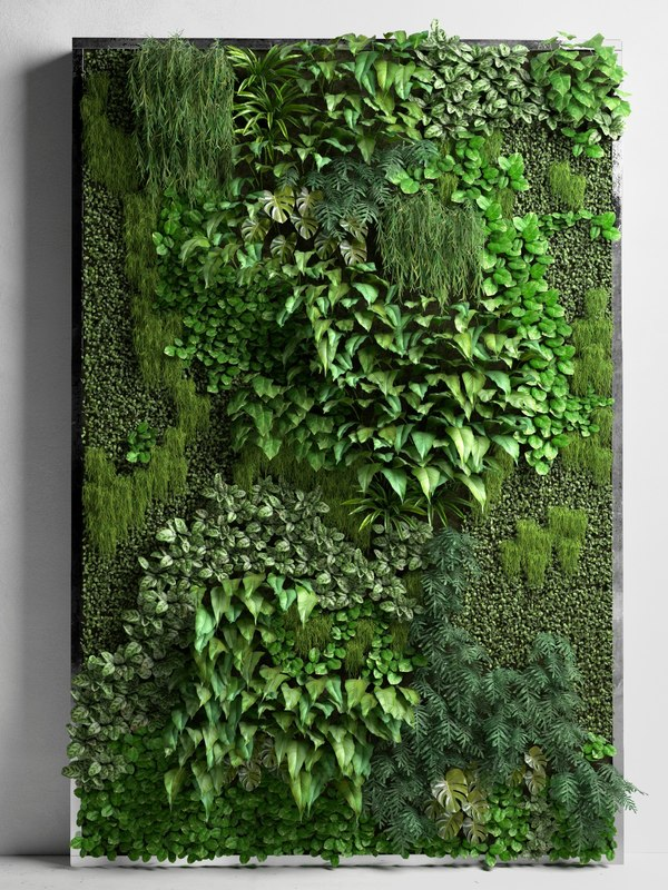 3D vertical garden 2  1145200  TurboSquid