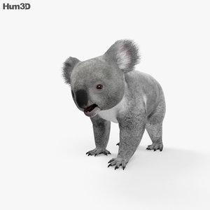 koala 3D