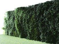 vertical garden 5 3D model