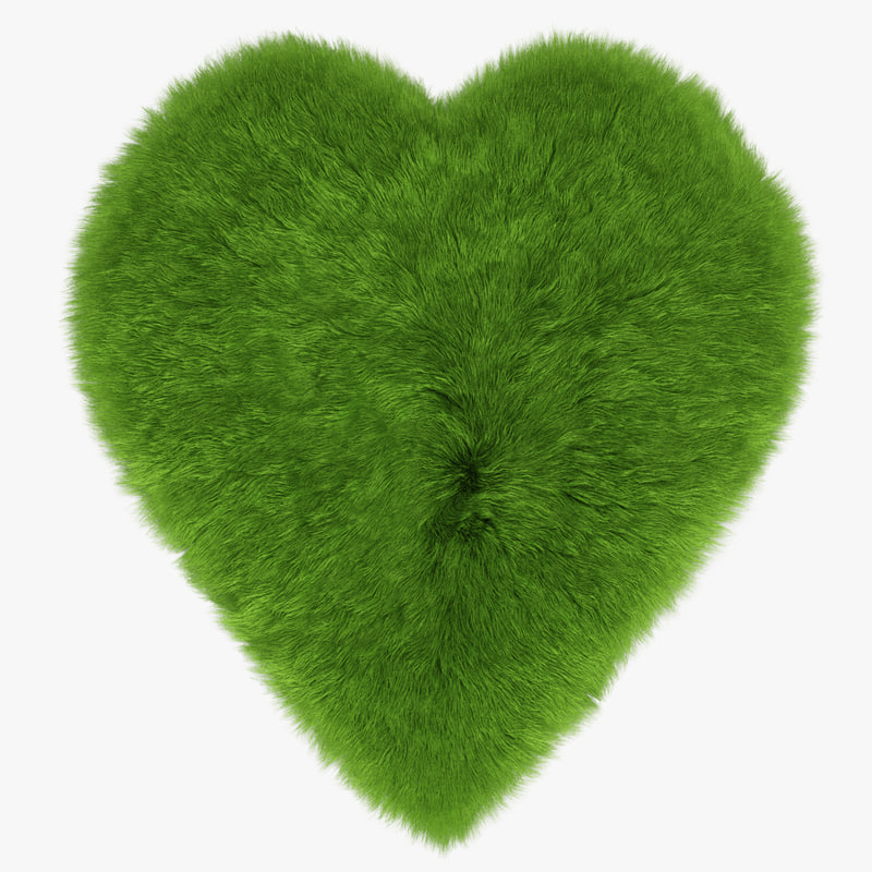 wool green heart rug model