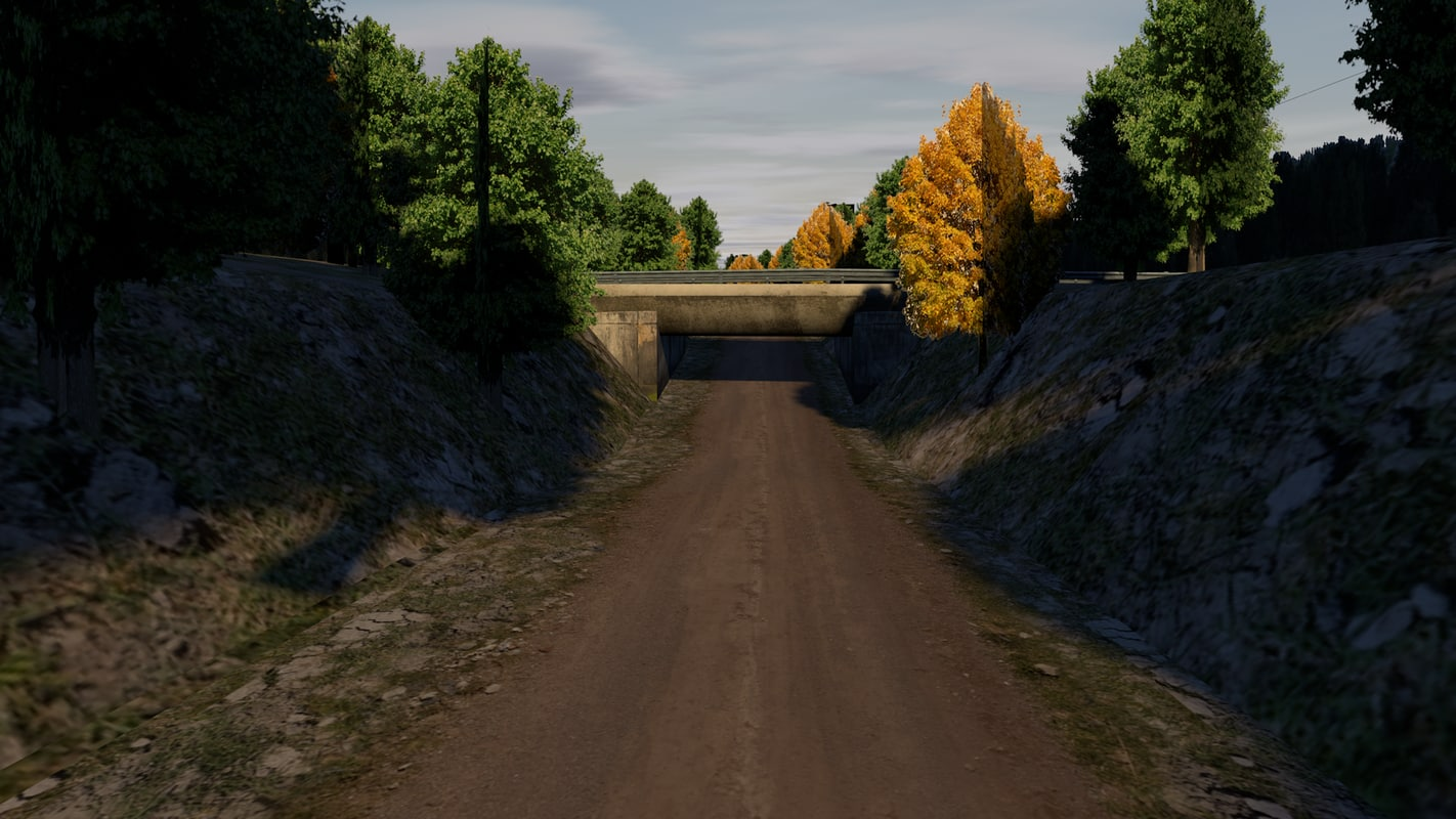 road forest model