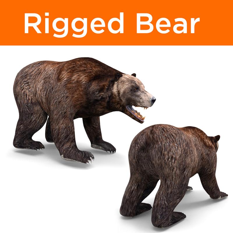 3D bear rigged model