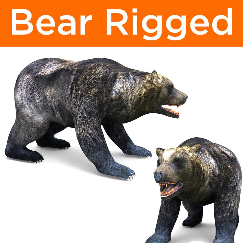 bear rigged ready 3D